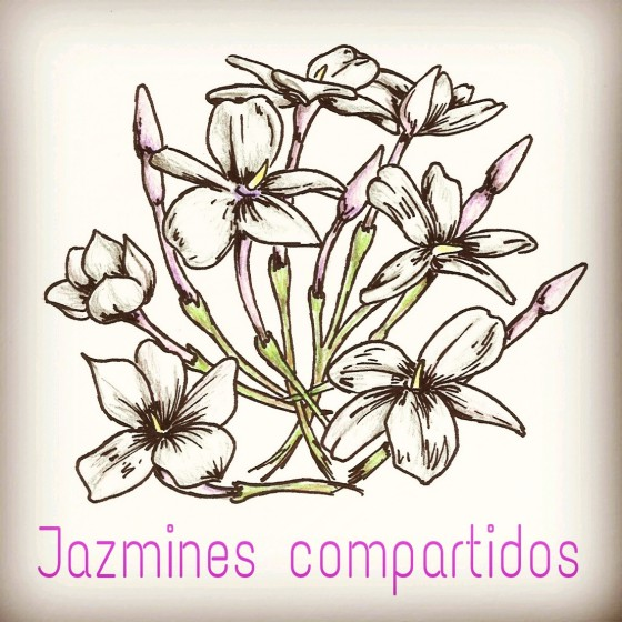 Jazmines compartidos