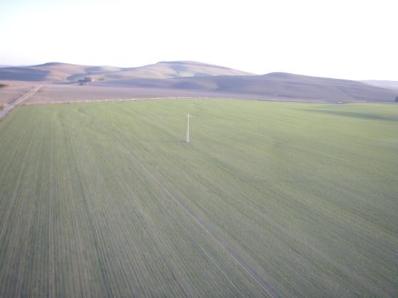Campos sembrados